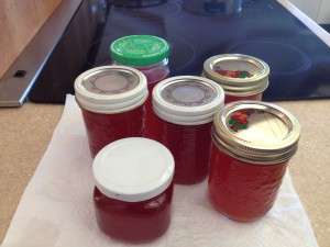 6 jars of jelly ready for the pantry.